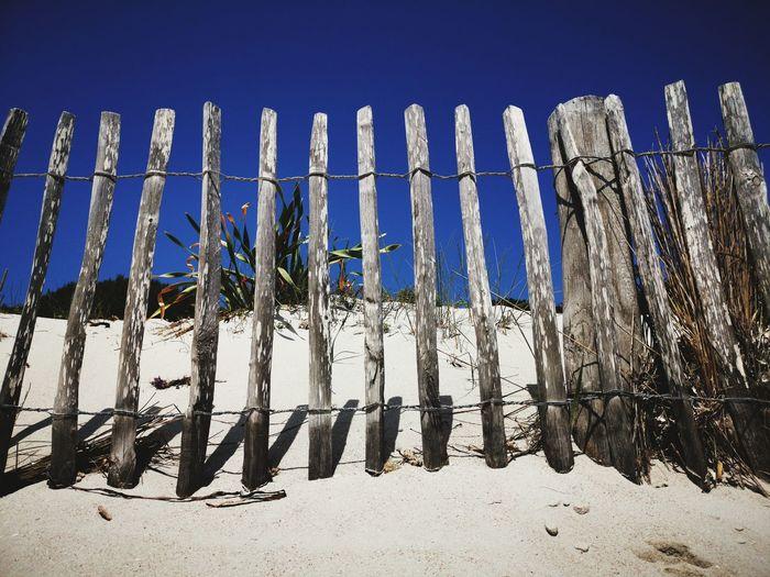 Petit Sperone - Bonifacio Corsica Baia Summer Holidays Vacanze Mare Mediterranean Sea Light Sand Sand Dune Sandy Beach Close-up Sky Fence Picket Fence