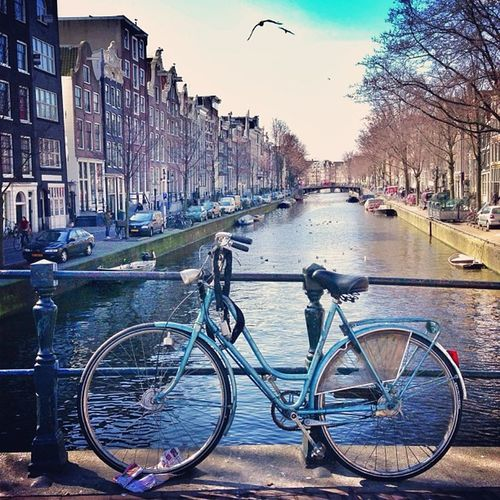 Blue #bicycle ??☀and another sunny day in #amsterdam ??#alan_in_amsterdam #canal #contestgram #gf_daily #gang_family #gramoftheday #holland Gramsterdam Iaminamsterdam Mokummagazine Amsterdam Bikespotting Holland Alan_in_amsterdam Bicycle Canal Bluesky Gang_family Gf_daily Contestgram Bikesaroundtheworld Gramoftheday Worldwidephotowalk