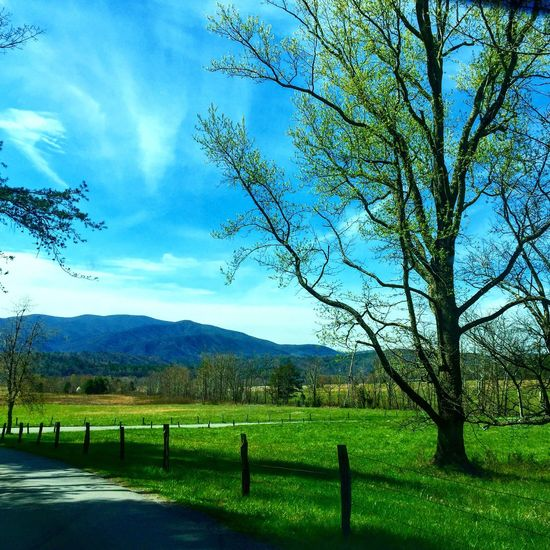 Spent a day in Cades Cove. Cades Cove Cadescove Sky Clouds Country Road