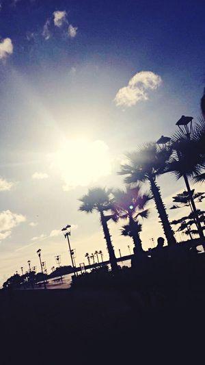 Glitch Morocco Mall Casablanca, Morocco Sunshine Light And Shadow