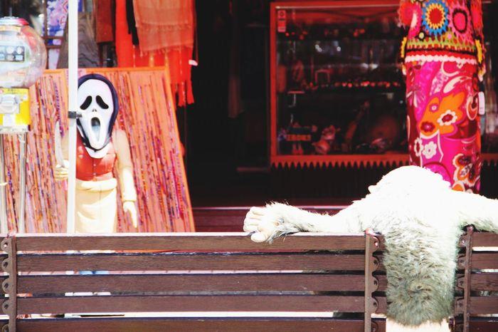 箱根 Hakone Hakone Japan 日本 Japan 後ろ姿 Scream No People Stuffed Toy Day Animal Themes Outdoors Mammal EyeEmNewHere