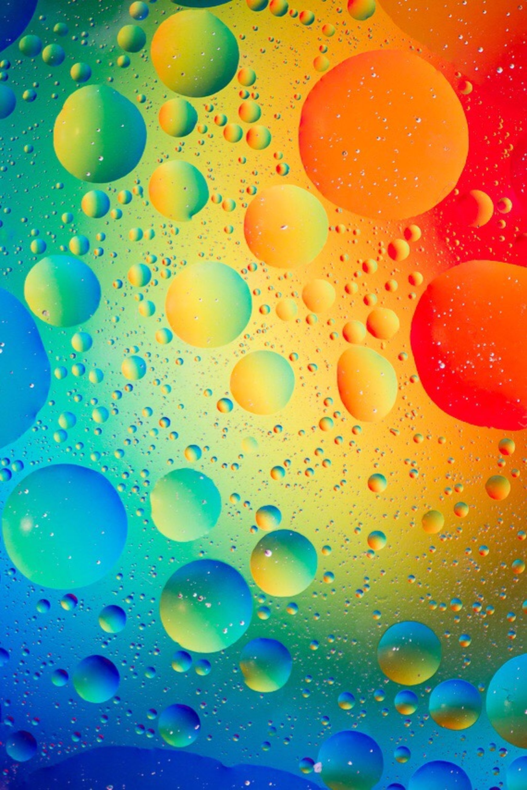 full frame, backgrounds, water, bubble, multi colored, drop, blue, indoors, transparent, close-up, freshness, pattern, wet, circle, abundance, colorful, no people, abstract, large group of objects, glass - material