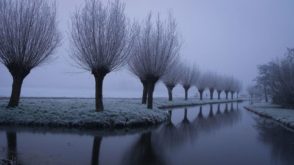 Reflection Sky Tree Water Clear Sky Nature Beauty In Nature No People Outdoors Day Frost Maasland