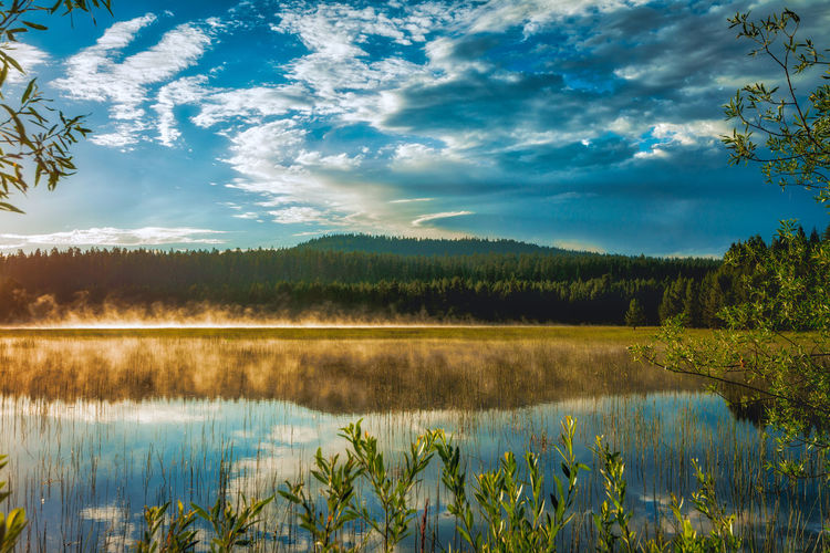 Sunrise over a lake in Central Oregon, United States Beauty In Nature Cloud - Sky Day Forest Green Color Growth Idyllic Lake Nature No People Non-urban Scene Outdoors Plant Reflection Reflection Lake Scenics - Nature Sky Sunrise Tranquil Scene Tranquility Tree Water