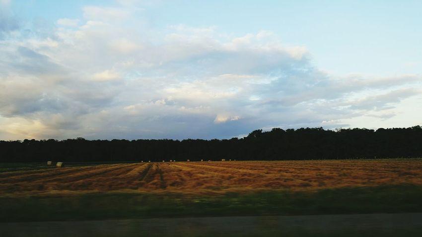 Bäume Und Himmel Sunset Sun Clouds And Sky Himmel Und Wolken Sonnenuntergang Nature Nature_collection Blue Summer Natur Feld Field Beauty In Nature Landschaft Landscape Sonne Home Is Where The Art Is
