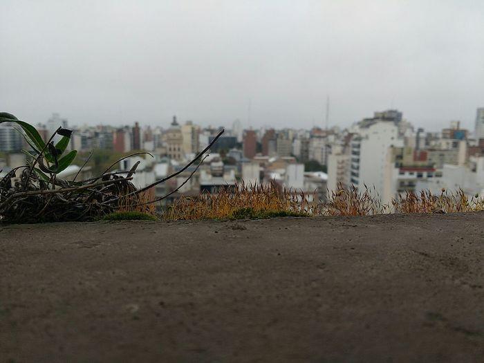City No People