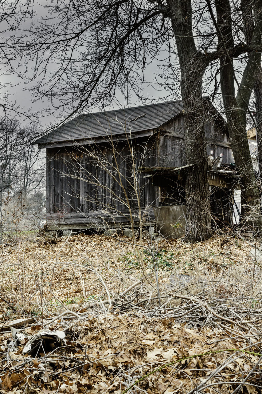 abandoned, built structure, architecture, bare tree, building exterior, house, no people, day, outdoors, tree, nature, rural scene, sky