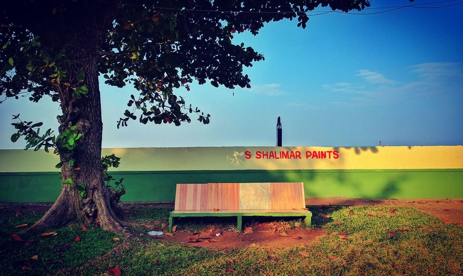 Day India Kerala Leasure Time Nature No People Nostalgia Outdoors Park Park - Man Made Space Park Bench Park Benches Park Tree Sky Tree Trees Vacations The Great Outdoors - 2017 EyeEm Awards