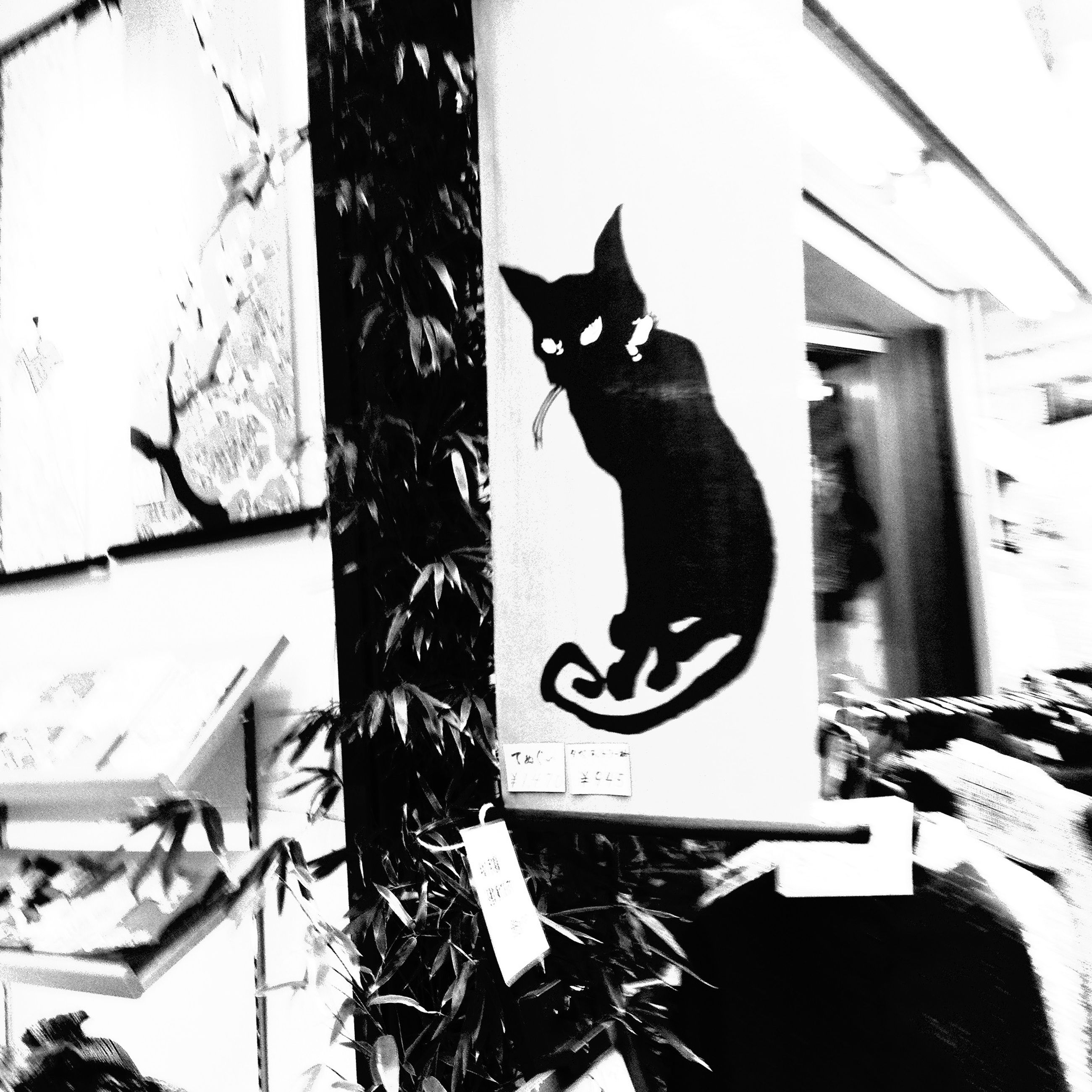 animal themes, one animal, pets, cat, domestic cat, domestic animals, black color, mammal, low angle view, text, animal representation, human representation, feline, no people, art, day, wall - building feature, communication, creativity, outdoors