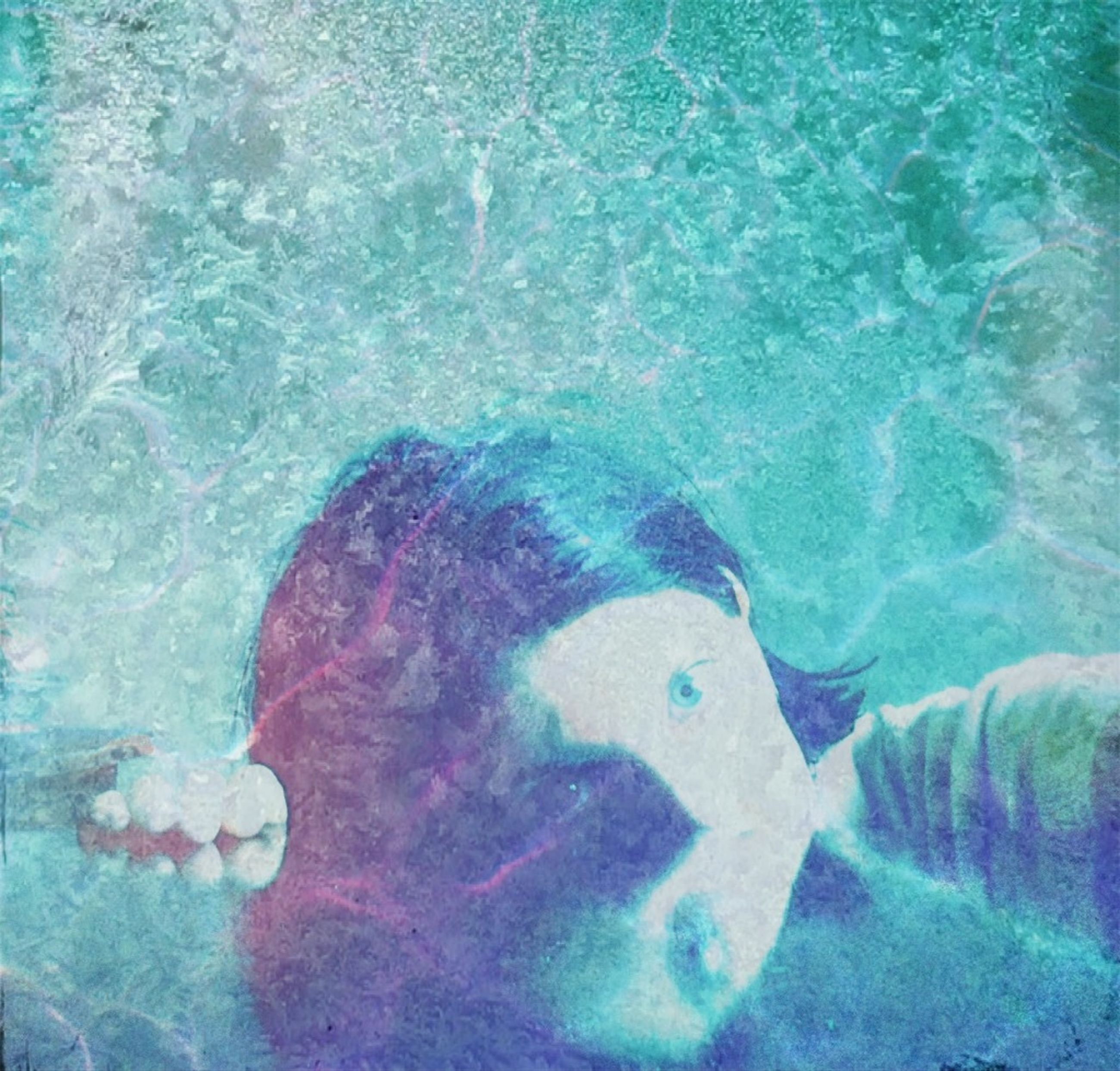 water, underwater, swimming, sea, undersea, sea life, high angle view, blue, fish, animal themes, nature, animals in the wild, turquoise colored, transparent, beauty in nature, rock - object, wildlife, swimming pool, waterfront, vacations