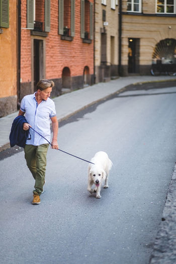 Man walking with dog on street in city
