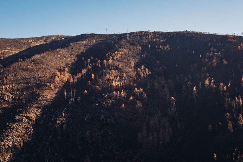 Little Village Piódão Burned Fire Forestfire Manteigas