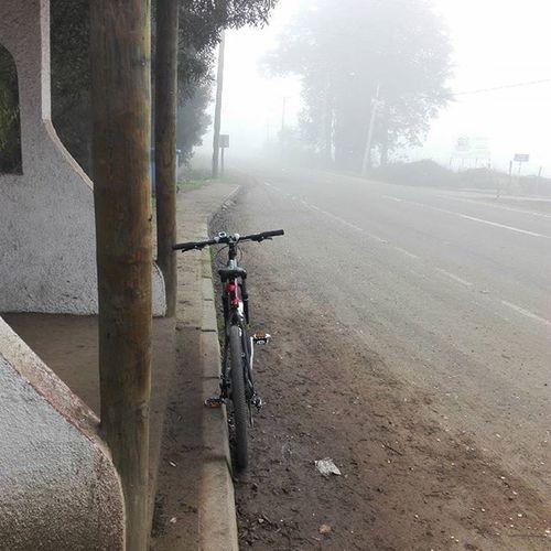 Enbiciando Paisaje Neblina Mañana Frio Deporte Salida Uplandbike Instanature Instatalca Instachile Chilegram Landscape Vacaciones Picoftheday Photooftheday Bici Bicicleta