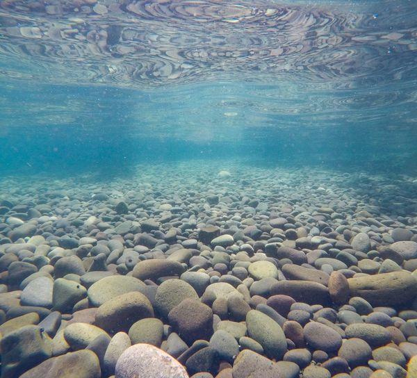 Pebble Water Nature No People Sea Beauty In Nature Underwater Day Pebble Beach UnderSea