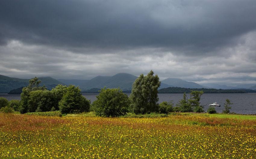 Beautiful Loch