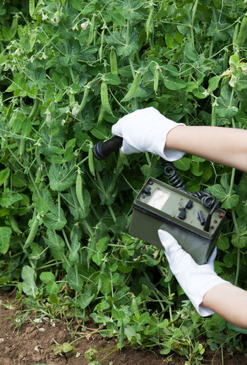 Cropped image of person using equipment while examining plants on field