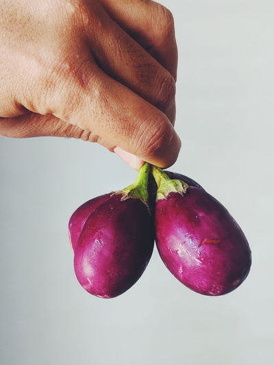 Body Part Close-up Finger Food Food And Drink Freshness Fruit Hand Healthy Eating Holding Human Body Part Human Hand Indoors  One Person Purple Real People Red Ripe Studio Shot Vegetable Wellbeing