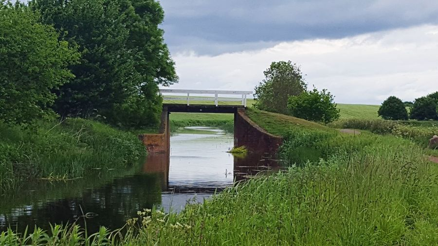Bridge over grass by trees against sky