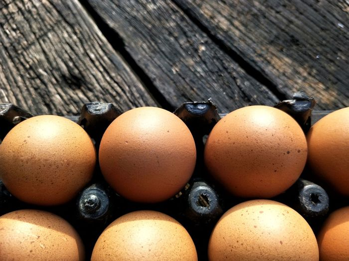 The arrangement of many fresh eggs in plastic egg pan on the old wooden table floor background Fresh Arrangement Plastic Egg Pan Foreground Blur Background Kitchen Indoor Textured  Wooden Old Table Brown Egg Carton Egg Table Close-up Food And Drink Eggshell Animal Shell Protein Easter