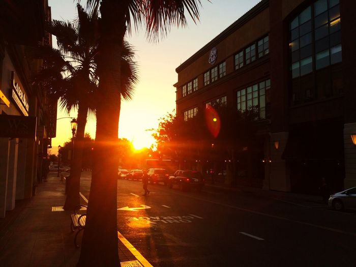 Sunset Santana Row California Street Taking Photos Sun Evening Sky Iphone 5 Palm Trees