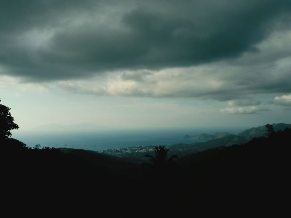 Heavy rain Soon🌧⛆ Mountain Cloud - Sky Tree Storm Cloud Nature No People Outdoors Landscape Pinaceae Sky Beauty In Nature Forest Day Photography Travel Destinations Walking Around Taking Pictures Justgosgoot My Photography EyeEm Gallery Beauty In Nature Adventure Photographing MadeInTimorLeste