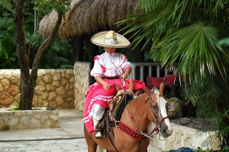 Tradition Hat Adult One Animal Outdoors Riding One Person Transportation Front View People Palm Tree Day Adults Only Travel One Woman Only EyeEmNewHere Domestic Animals Only Women Tree Nature Mexico Yúcatan Horseriding Mexican Culture Mexican Travel Photography