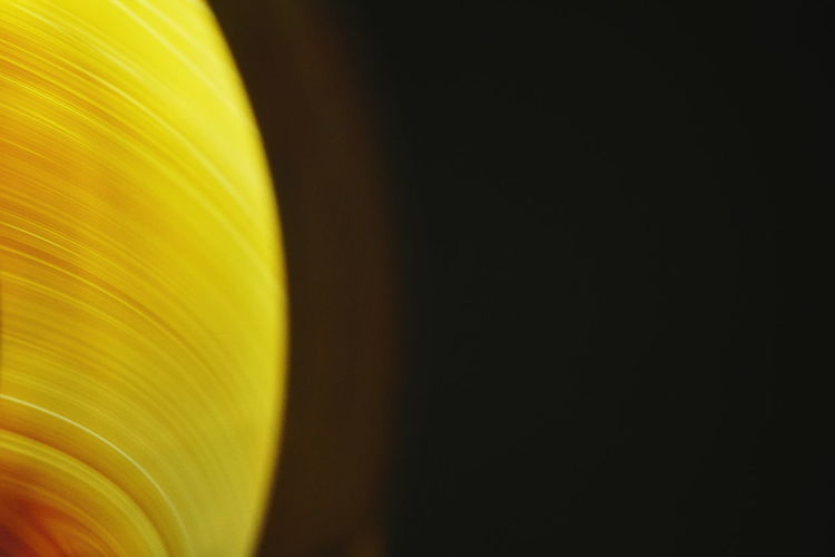 Close-up of yellow colored pencils against black background
