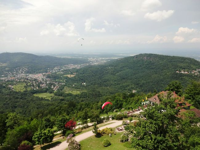 Tree Landscape Nature Day Outdoors Flying Mountain Travel Destinations Scenics Cloud - Sky Beauty In Nature Vacations Paragliding Paragliders Merkur Merkurberg Baden-Baden Baden Baden Landschaft Rheinebene Schwarzwald Gewitterstimmung Thundery Panorama Panoramic View #FREIHEITBERLIN