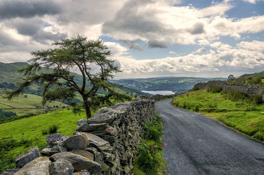 """Rock walls line the road downhill along """"The Struggle"""" Beauty In Nature Cloud - Sky Day Grass Landscape Mountain Nature No People Outdoors Road Rock - Object Scenics Sky Struggle The Way Forward Tranquil Scene Tranquility Tree Water EyeEmNewHere Lake District"""