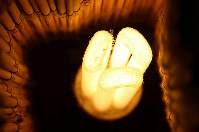 Close-up Light Light Bulb Light Bulb Light Light Bulbs No People Orange Light Orange Lighting Orange Lights