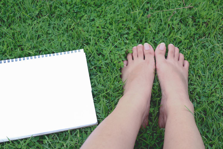 Low section of woman by blank spiral notebook on grass