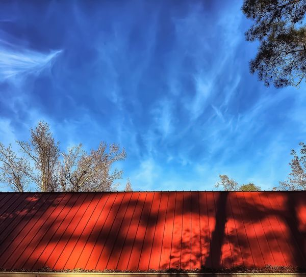 Tin Roof Autumn Marbled Sky Azure Cloud - Sky Afternoon Dappled Sunlight Shadows Trees Barn Outdoors Built Structure Architecture Nature Beauty In Nature Blue Textures And Surfaces Taking Photos Walking Around Clear Sky Idyllic Sunlight