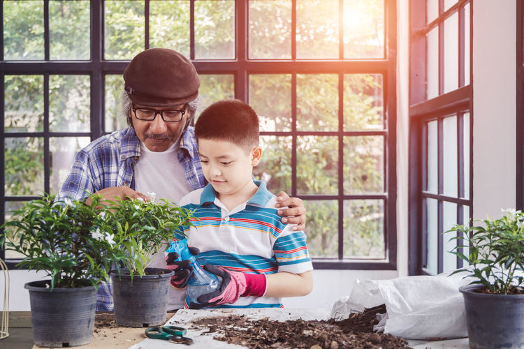 Father and son on potted plant