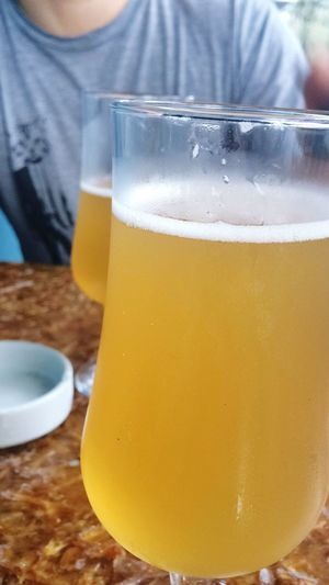 Drink Refreshment Close-up Yellow Alcohol Kambucha Drinking Glass Table Real People Freshness Fermentation Healthydrink