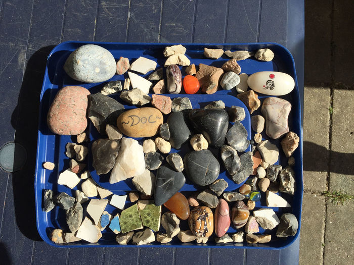 High angle view of shells in container