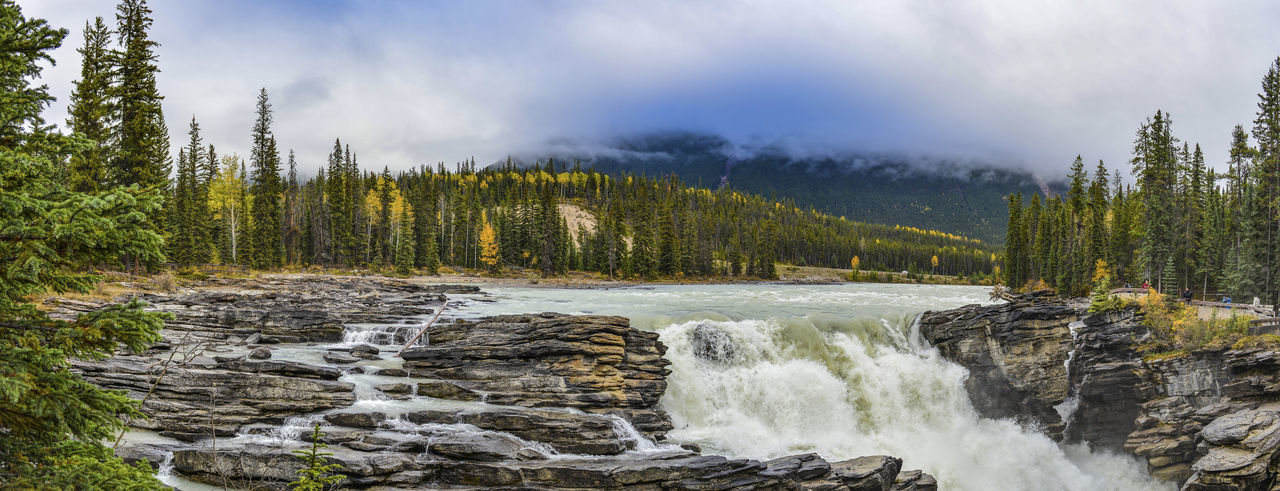 JASPER NATIONALPARK, ALBERTA,, CANADA. Panorama view of Athabasca Falls Scenics - Nature Nature Beauty In Nature Landscape Mountain Flowing Water Power In Nature Waterfall River Wilderness Sediments Scenery Cascade autumn mood Panorama Tourist Attraction  Jasper National Park Alberta Canada Athabasca Falls Rocky Mountains Alberta No People Environment Clouds Forest Canada