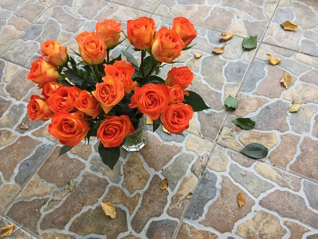 Flower Freshness Rose - Flower Fragility Petal Orange Color Flower Head Beauty In Nature Directly Above Bouquet Selective Focus Bunch Of Flowers Nature Arrangement Multi Colored Decoration Red Day Rosé Springtime