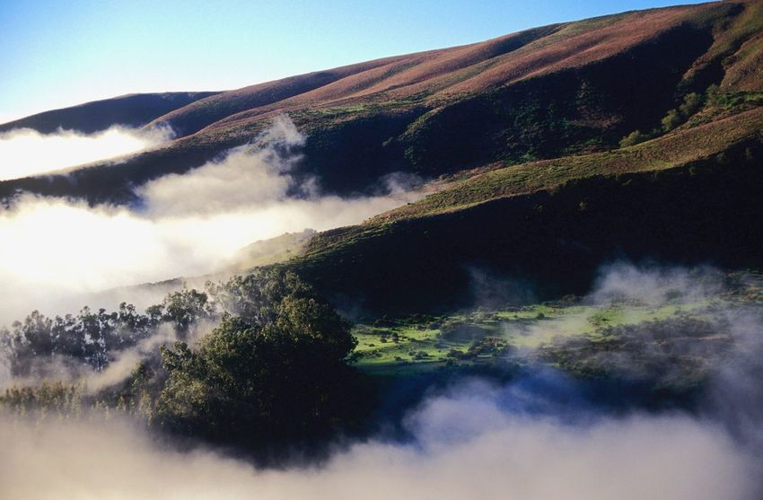 Foggy Landscape Foggy Fog Scenics Tranquil Scene Beauty In Nature Tranquility Nature Mountain No People Idyllic Day Landscape Outdoors Clear Sky Sky