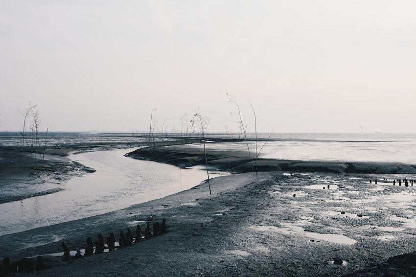 Wremen Nordseeküste Home Watt EyeEm Nature Lover Pril Ebbe Tide VSCO Lanscape Photography