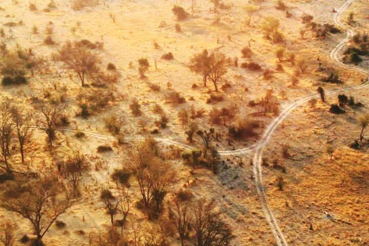 No People Nature Outdoors Day Okawango Delta Botswana Africa Smallplane