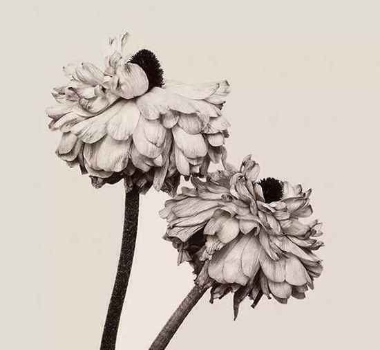 My Drawing (: Sketching Black & White Love Drawing ❤