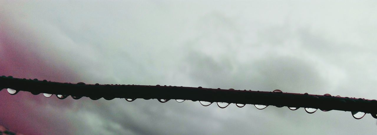 Focus On Foreground No People Close-up Mobile Camera Photography SSClicks SSClickPics Droplets On Cable