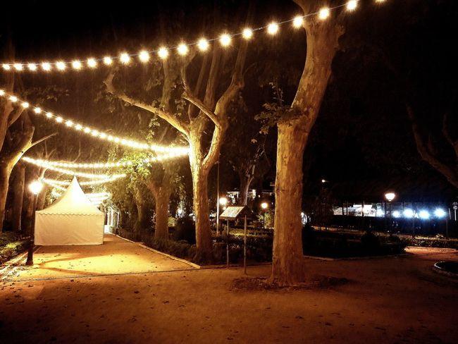 Fira d'Agost 2017 Fira Xativa Jardín Del Beso Night Party Feria Xativa