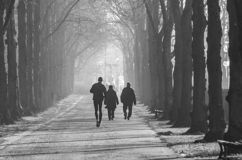 Beauty In Nature Black And White Blackandwhite Cold Temperature Fog Full Length Landscape Outdoors Rear View Scenics Silhouette The Way Forward Togetherness Tree Walking Winter