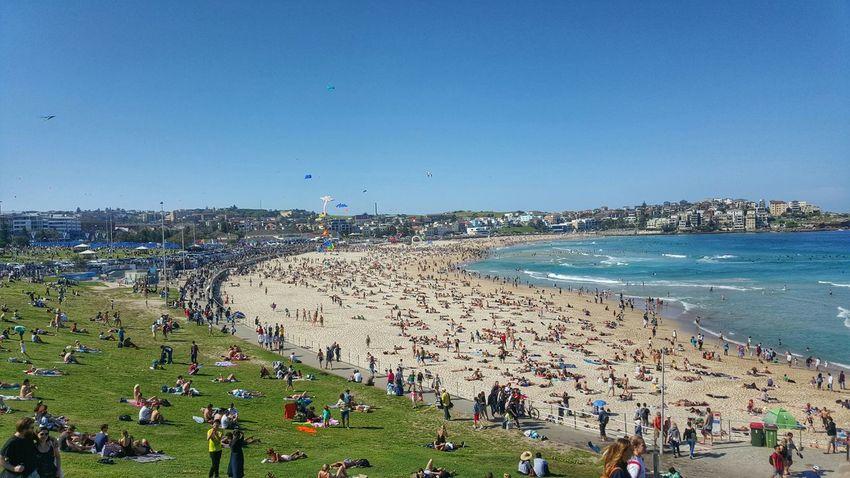 Beach Kites Bondi Galaxys6