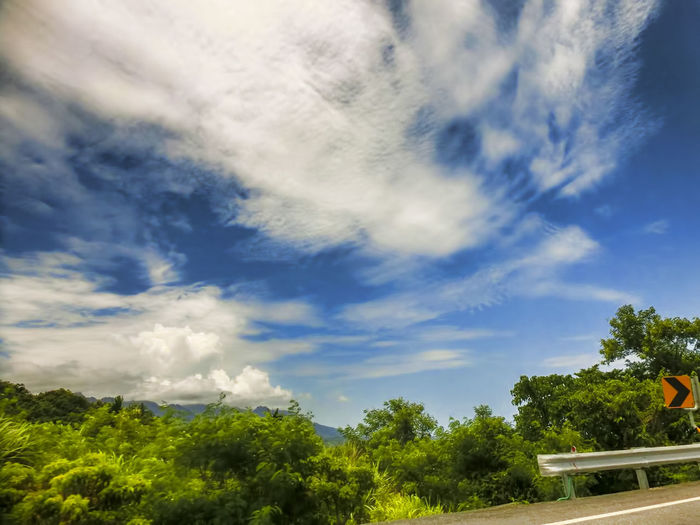 Beauty In Nature Cirrus Cloud - Sky Day Growth Low Angle View Nature No People Outdoors Scenics Sky Tree Treetop