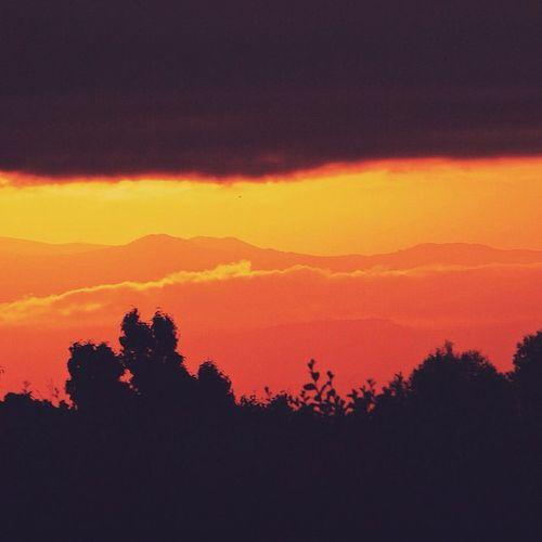 | SUNSET CHRONICLES |Chasingthesun CaptureKenya Sunset Silhouette sunset_united sunsets_and_silhouettes sunsets_captures loves_kenya africanamazing igersnyeri igkenya photographyislifee vscokenya VSCOcam vscocamdaily latergram dailysunset thisisafrica ig_africa magicalkenya wu_africa wonderful_places iphoneonly iphoneography