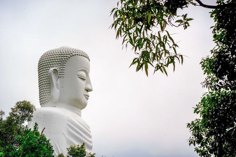 Low angle view of statue against trees against sky