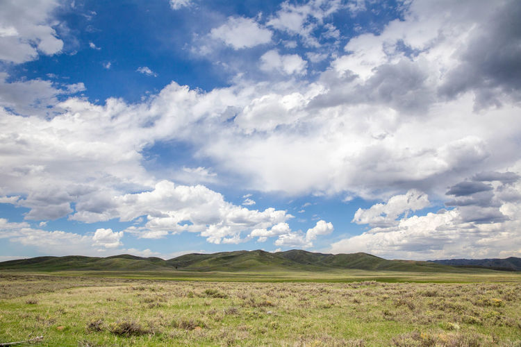 Panoramic view of cloudy blue sky, mountains, and high-desert landscape in Camas County, Idaho, USA. Summer Exploratorium Summer Views Summertime Beauty In Nature Cloud - Sky Day Environment Field Grass Green Color Horizon Horizon Over Land Land Landscape Nature No People Non-urban Scene Outdoors Plant Rolling Landscape Scenics - Nature Sky Summer Tranquil Scene Tranquility