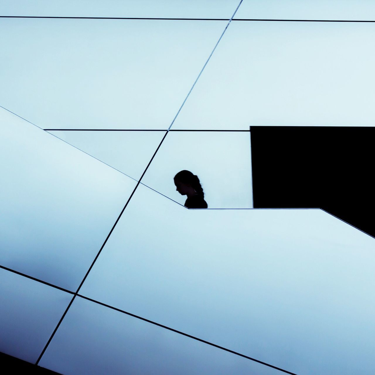 Silhouette Of Girl In Modern Building